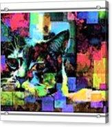 Patchwork Kitty Acrylic Print