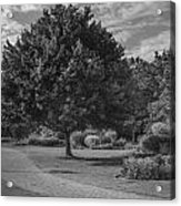 Path At Michigan State University Garden  Acrylic Print