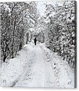 Path In The Snow In Winter In Denmark Acrylic Print