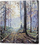 Path In The Woods Acrylic Print by Andrei Attila Mezei