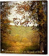 Path Of Life Acrylic Print by Lena Auxier
