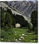 Path Of Life Ruby Mountains Stock Trail Acrylic Print