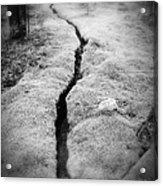 Path Taken Acrylic Print