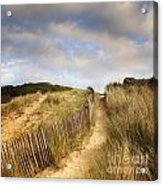 Path Through Dunes Acrylic Print by Colin and Linda McKie
