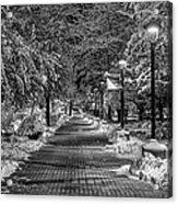Path Through Eastern Acrylic Print