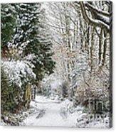 Path Through The Snow Acrylic Print