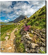 Path To Lake Idwal Acrylic Print by Adrian Evans