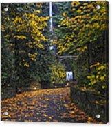 Path To Multnomah Falls Acrylic Print