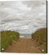 Path To The Beach 12058 Acrylic Print