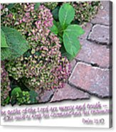 Paths Of The Lord Acrylic Print