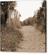 Pathway To The Beach Acrylic Print