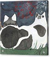 Patriotic Cats Acrylic Print