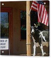 Patriotic Cow Cave Creek Arizona 2004 Acrylic Print