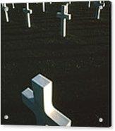 Pattern Of Modern Dying Acrylic Print