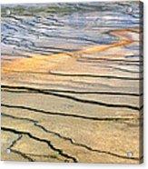 Patterns At Yellowstone #1 Acrylic Print