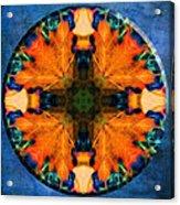 Patterns Of Autumn Acrylic Print