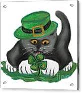 Patty The Grey Kitten Loves Four Leaf Clovers Acrylic Print