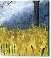 Pauls Tree Acrylic Print