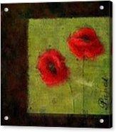 Pavot - 027023173-bl01 Acrylic Print
