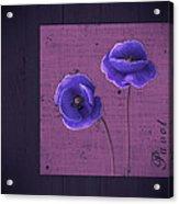 Pavot - S01c09a Acrylic Print