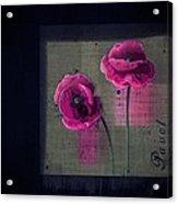 Pavot - S1c12j033036161bl1 Acrylic Print