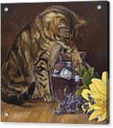 Paw In The Vase Acrylic Print