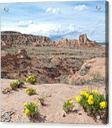 Pawnee Buttes Colorado Acrylic Print