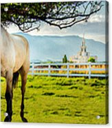 Payson Country Temple Oil Paint Texture Acrylic Print