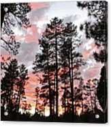 Payson Pines Sunset Acrylic Print