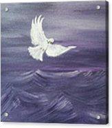 Peace Amidst The Storm Acrylic Print