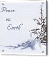 Peace On Earth 2 Acrylic Print
