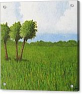 Peace River Prairie Acrylic Print