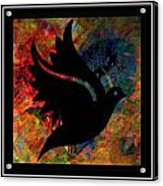 Peace Series Xi Acrylic Print