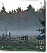 Peaceful Farm Scene Acrylic Print