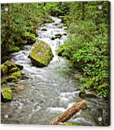 Peaceful Flowing Waters Acrylic Print