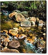 Peaceful Mountain Stream Acrylic Print