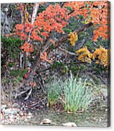 Peaceful Retreat Lost Maples Texas Hill Country Acrylic Print