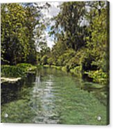 Peaceful Spring Acrylic Print