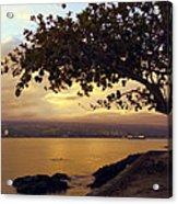 Peaceful Sundown On Hilo Bay - Hawaii Acrylic Print