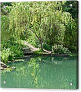 Peaceful Willow Tree Art Prints Acrylic Print
