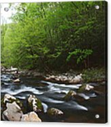 Peaceful Stream Acrylic Print
