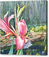 Peach Canna By The Pond Acrylic Print by Patricia Allingham Carlson