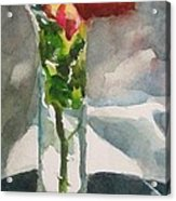 Rose In The Clear Acrylic Print