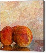 Peach Trio  Acrylic Print