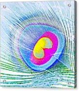 Peacock Feather Neon Acrylic Print