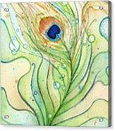 Peacock Feather Watercolor Acrylic Print
