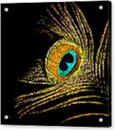 Peacock Feathers 7 Acrylic Print
