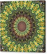 Peacock Feathers Kaleidoscope 7 Acrylic Print