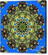 Peacock Feathers Kaleidoscope 9 Acrylic Print