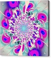 Peacock Flower Acrylic Print